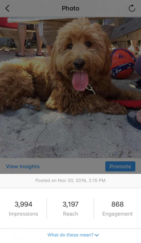 instagram-business-insights-individual-post